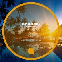 Luis D Aguiar - Burning Up