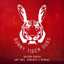 Kaiser Souzai, Gabe, Rocksted, Pavel Petrov, DiMO (BG) - Arp Incl. Remixes