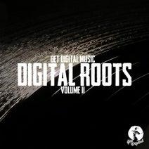 H2, Leon, Piero Pirupa, Tapesh, Maximiljan, Luca Agnelli, Marco Faraone, Murat Uncuoglu, Alican, Re.you - Various Artists - Get Digital Presents Digital Roots Volume II