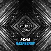 J-Dam - Raspberry