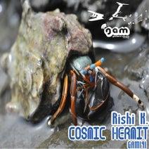 Rishi K. - Cosmic Hermit