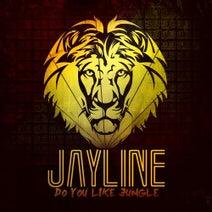 Jayline, Soulculture, Barikade, Digibit, Certified Sickness, QC, Ian Dee - Do You Like Jungle LP