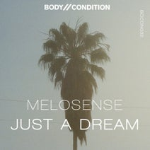 Melosense - Just A Dream