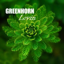 Greenhorn - Lovin