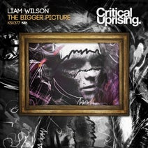 Liam Wilson - The Bigger Picture
