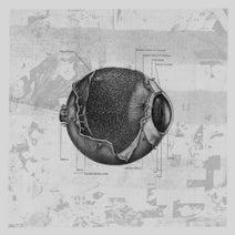 Thomas Hessler, Border One, Phara, SP-X - FUNCTION V/A