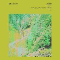 Andrem, Rigopolar, Dawad, Teniente Castillo, Roe Deers - Ascension EP