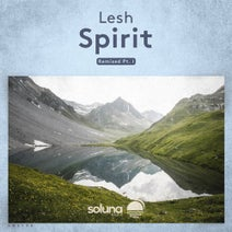 Lesh, Vince Forwards, Joshua Ollerton, Andrew Lang - Spirit Remixed Pt. I