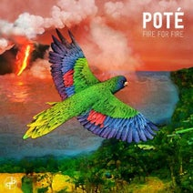 Carmody, Pote, Kojey Radical - Fire for Fire - EP