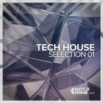 Carlo Beta, Paul Threy, Lokomotiv DJs, Peter New, Balistix - Tech House Selection 01