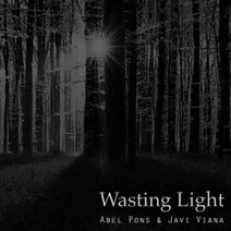 Javi Viana, Abel Pons - Wasting Light