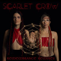 Scarlet Crow, Pangani, Entheo, EO, Lo.Renzo, Kalya Scintilla, Emerald Dragonfly, Dissolv, Subaqueous, SOULESTIAL, KR3TURE, Saqi, Ra So, Blonde Onyx, Psydraft, Dandy Ryder, B-RiddmZ - Remembrance Remixes