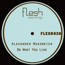 Alexander Wassmeier - Do What You Like