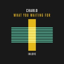 Charlo - What You Waiting For