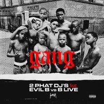 2 Phat Dj's - Gang (feat. Evil B vs B Live)