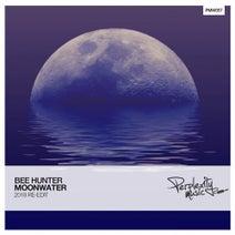 Bee Hunter - Moonwater (2018 Re-Edit)