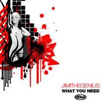 JimiTheGenius - What You Need - JimiTheGenius