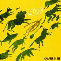 Stevie R - Melt {Part I}