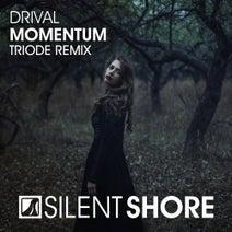 Drival, Triode - Momentum (Triode Remix)