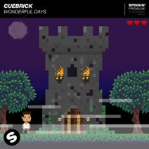 Cuebrick - Wonderful Days