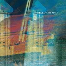 Birds ov Paradise - Konstrukt 010