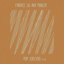 Mauler - PGM 100/200