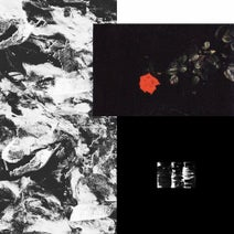 Ribe, Oisel, Refracted, Ruptur3 - Prime EP
