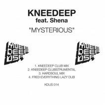 Knee Deep - Mysterious (feat. Shena)
