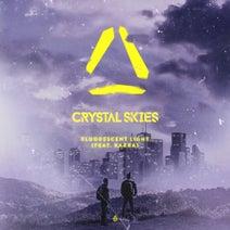 Crystal Skies - Fluorescent Light