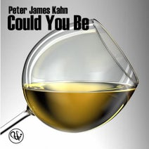 Peter James Kahn, Marc Cotterell, Matt B Soulbasics, Patrick Green, Didier Vanelli - Could You Be