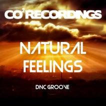 DnC Groove - Natural Feelings (Main Edit)