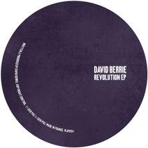 David Berrie - Revolution EP