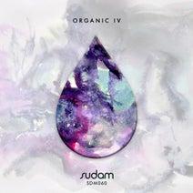 Delum, Emi Galvan, Ivan Masa, Manuel Sahagun, Christ Burstein, Los Cabra - Organic IV