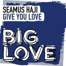 Seamus Haji - Give You Love