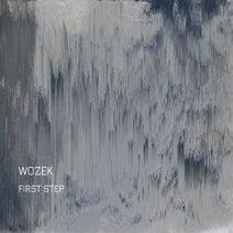 Wozek - First step