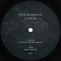 Randomer, Hodge, Serge, Alden Tyrell, Kowton - If I Could Stop