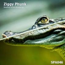 Ziggy Phunk - Shadows of my Dream
