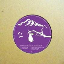 Jensen Interceptor, Das Muster - Activated EP