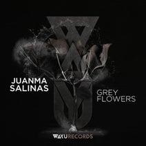 Juanma Salinas, Landhouse - Grey Flowers
