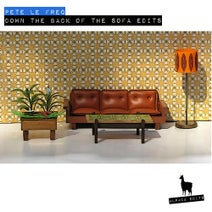 The Freq Girls, enSLAVEd, Teddy Freqqygrass, Chaka Freq, Freq Johnson, The Freqsons, Pete le Freq - Down The Back Of The Sofa Edits