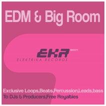 Ian Tools - EDM & Big Room Loops