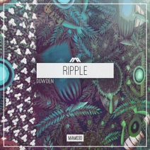 Amber Long, Dowden - Ripple
