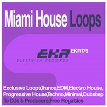 Lady Hunt - Miami House Loops
