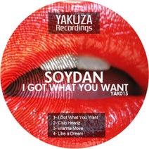 Soydan - I Got What You Want