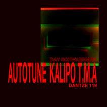 Autotune, Kalipo, T.M.A - Day Schwaermer
