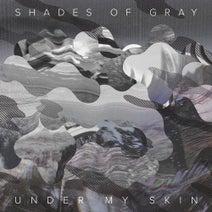 Shades Of Gray, DJ Schwa - Under My Skin