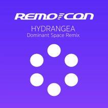 Remo-con, Dominant Space - Hydrangea (Dominant Space Remix)
