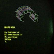 Dennis Quin - Basiszuur