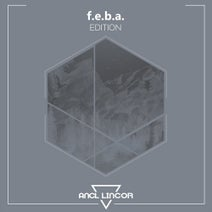 f.e.b.a., Christian Monique, Fabio Orru, Following Light - Edition