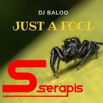 DJ Baloo - Just a Fool